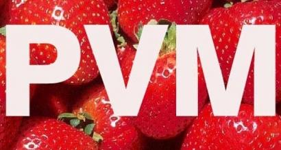 PVM kodo gavimas Jūsų įmonei